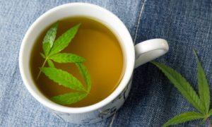 Cup of hemp tea